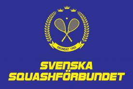 [:sv]racketball (2)[:]