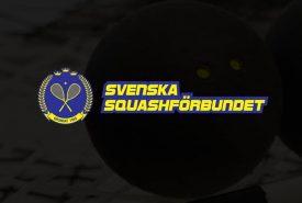 [:sv]squash_fallback_vertical[:]